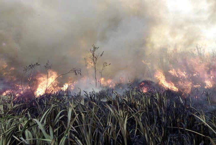 Los bomberos lograron extinguir el incendio en la costa de Hudson