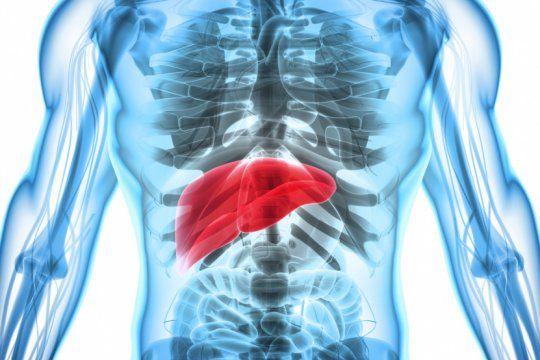 dia mundial contra la hepatitis: 7 cosas que no sabias de la enfermedad