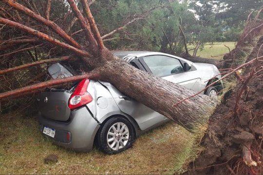 ¿tornado en darregueira? mira los destrozos que dejo la tormenta