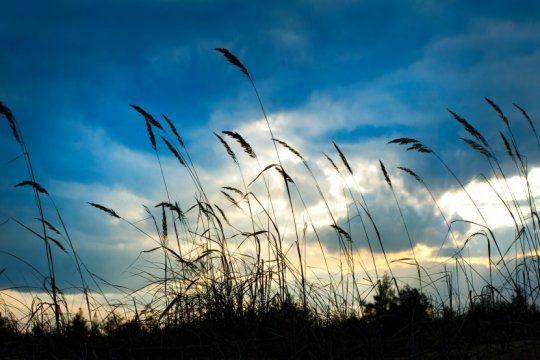 alerta meteorologico por vientos intensos con rafagas en el sur y el centro-este de la provincia