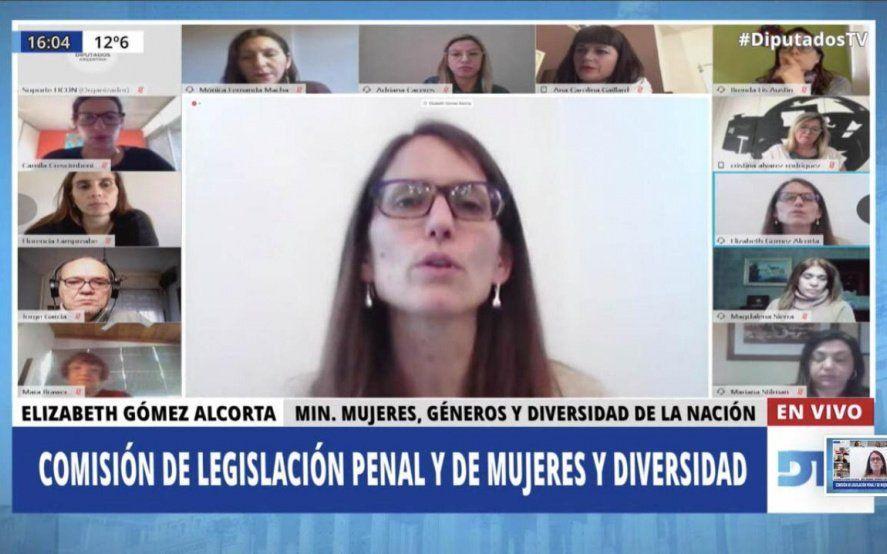 Proyectos contra la violencia de género: Gómez Alcorta expuso en Diputados