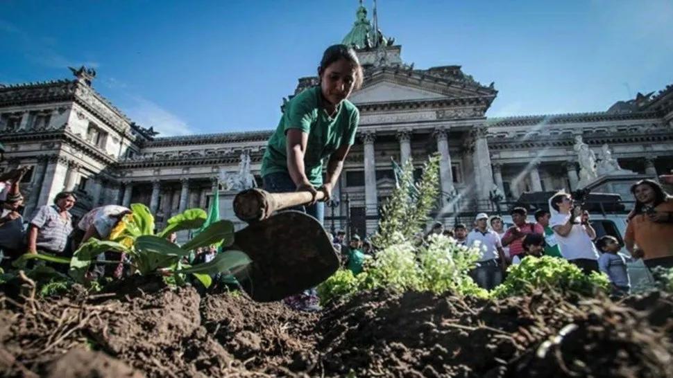 ley de acceso a la tierra: alimentazo en el congreso