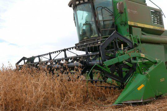 el campo agita pronosticos negativos sobre la proxima campana de trigo y maiz pese a los datos favorables del mercado
