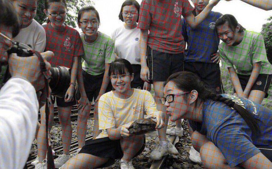 Furor por una nueva ilusión óptica: la fotografía blanco y negro que ¿se ve a color?
