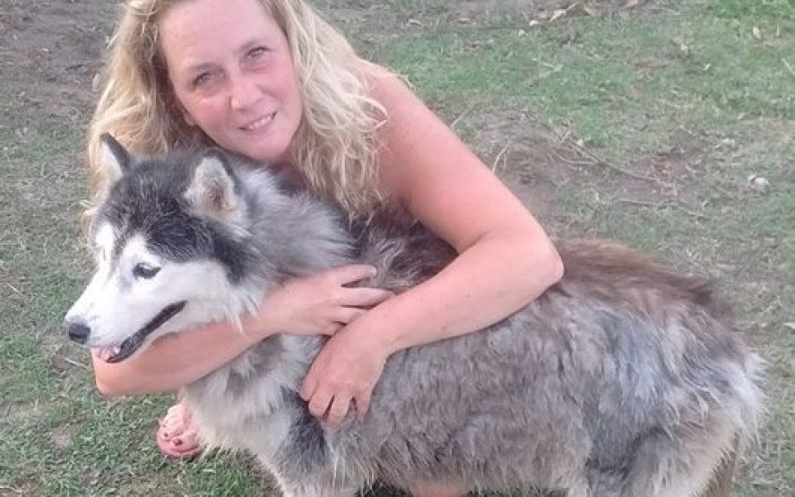 El reencuentro más esperado: después de seis años de búsqueda, una perra volvió con su familia