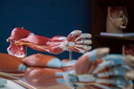 con maniquies que hablan y simuladores, los estudiantes de medicina estrenaran un novedoso sistema de practicas