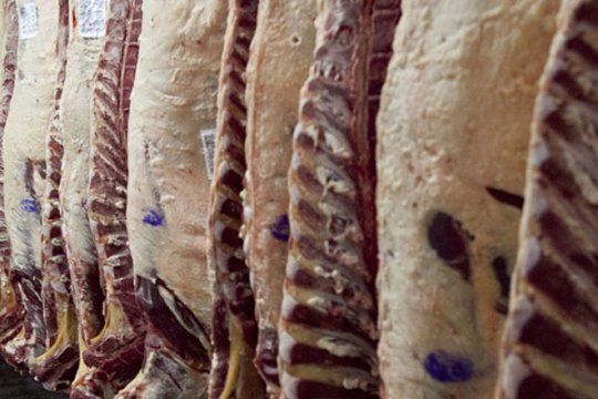 ¿tambien faltara la carne? gremios paralizan frigorificos de todo el pais en reclamo salarial