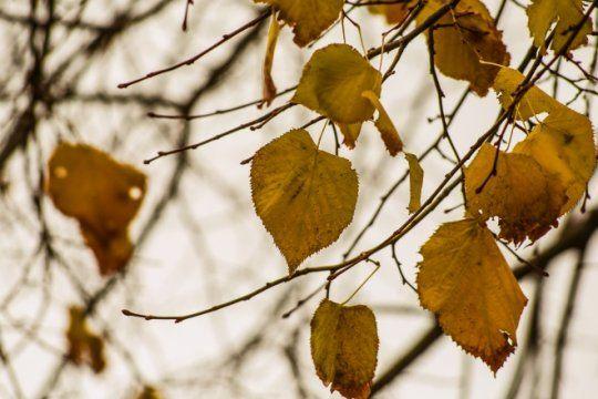 cuarentena otonal: asi va a estar el tiempo este fin de semana en la provincia de buenos aires