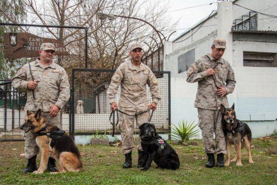 pasaron a retiro a tres perros penitenciarios en la provincia de buenos aires