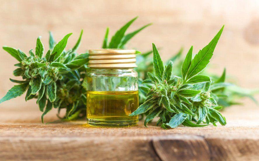Con un amparo, piden que el Estado distribuya aceite de cannabis para el tratamiento de enfermedades