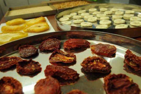 la unlp se suma al combate contra el hambre con alimentos nutritivos y accesibles