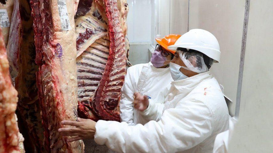 Carne: inminente reapertura parcial de exportaciones