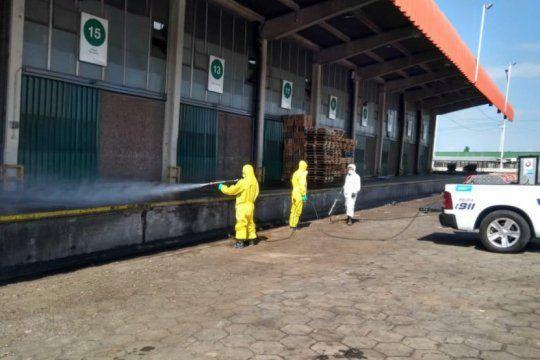 alarma en el mercado central tras reportar 89 casos de coronavirus en mas de una veintena de operadores