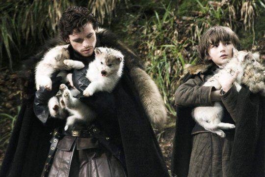 enterate por que un actor de game of thrones pide que dejen de comprar perros siberianos