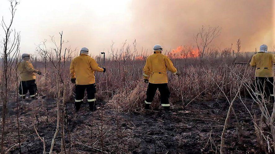 Incendios: Cabandié le apuntó al intendente de San Nicolás y a empresarios
