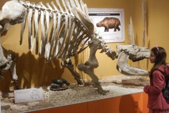 ciencias naturales en miramar: criaturas de tamano natural en el nuevo museo, clave entre los paleontologos
