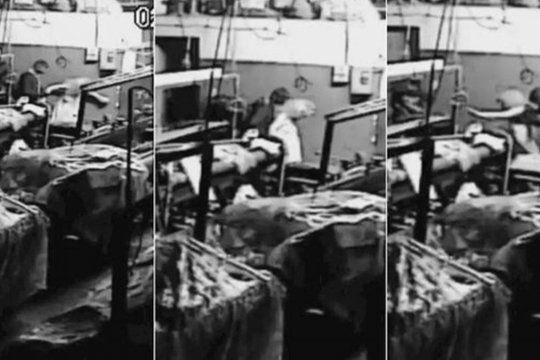 Delincuentes torturaron a una mujer de 93 años y está grave