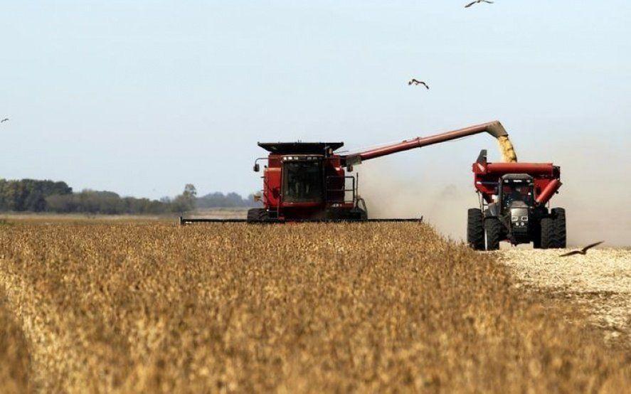 Presión impositiva sobre el agro: de cada 100 pesos producidos, el Estado se lleva 60