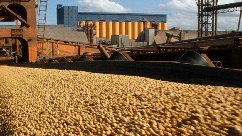Exportaciones: El campo tuvo liquidaciones récord en agosto
