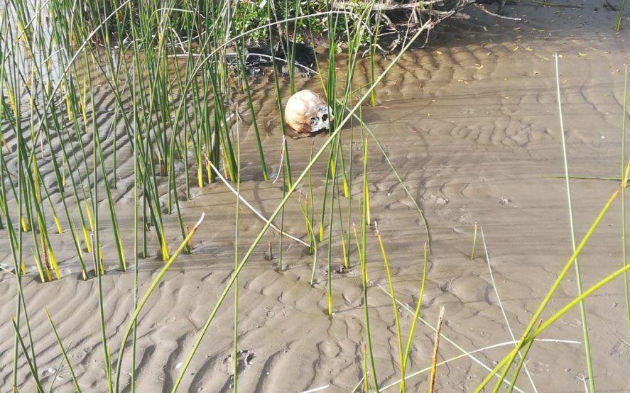 Punta Lara: encontraron restos humanos en una playa