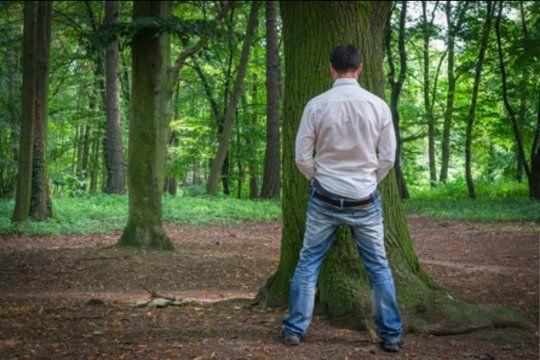 Denuncia contra un joven rugbier por iniciar una pelea al orinar en un árbol
