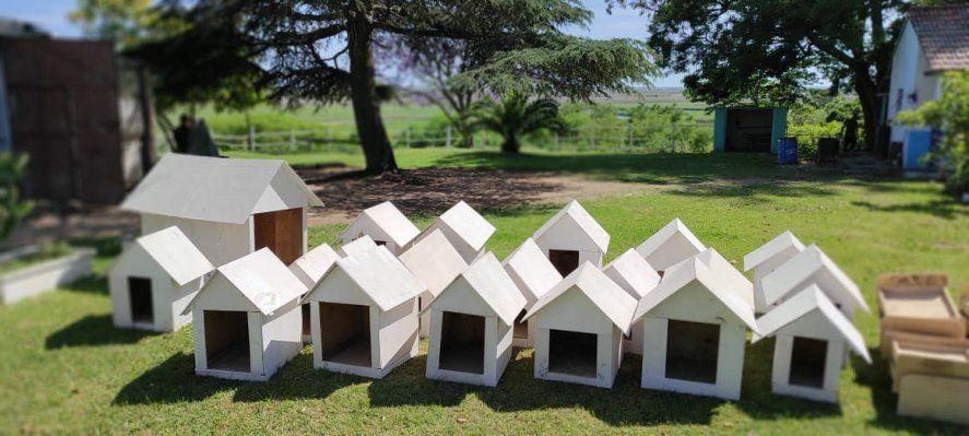 Presos elaboraron cuchas y camas de madera para un refugio de perros