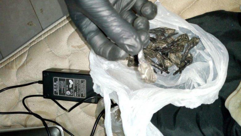 Desbarataron una red narco que comercializaba cocaína y marihuana en Chacabuco
