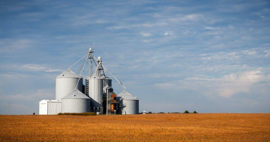 El Gobierno apuesta a las exportaciones de soja