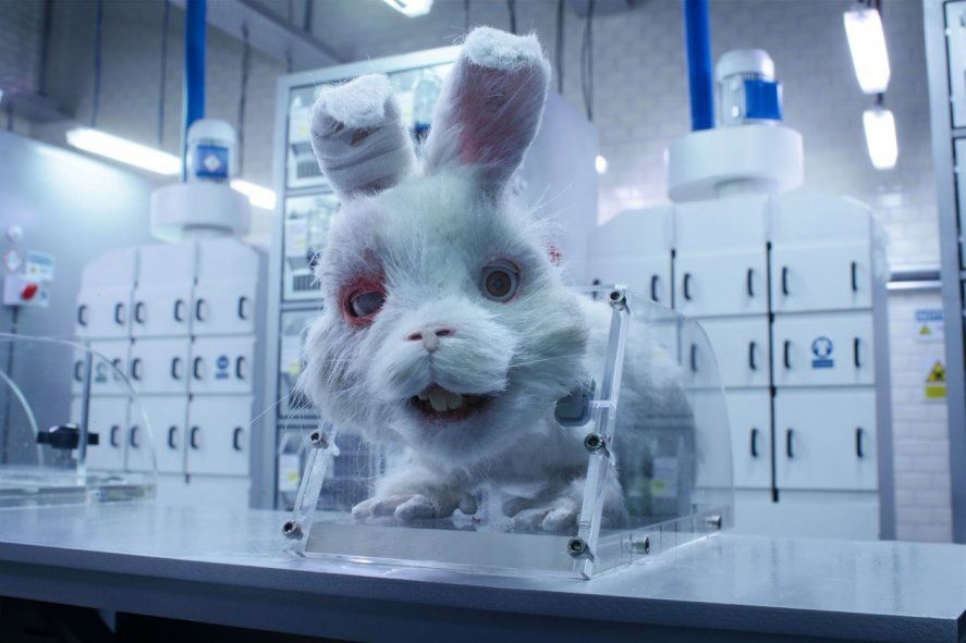 El corto Save Ralph puso bajo la lupa la experimentación en animales