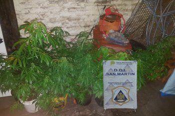 En una de las casas allanadas por el crimen del policía secuestraron marihuana