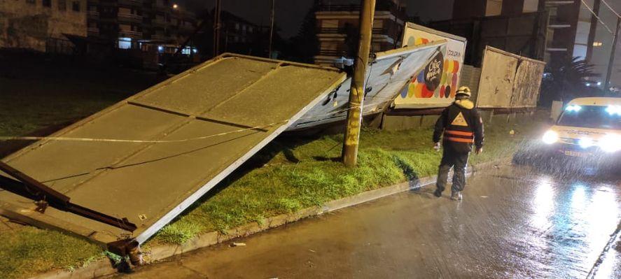 Temporal en Mar del Plata: el viento voló techos y tiró árboles