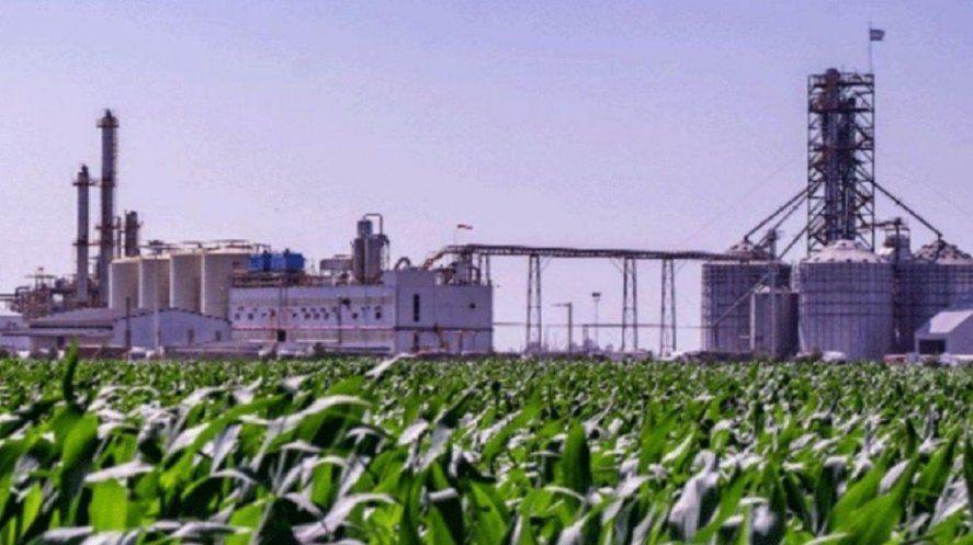 Extienden la vigencia del régimen de biocombustibles