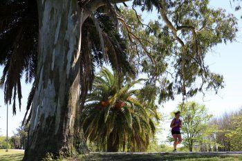 Llega un fin de semana con buen tiempo a la provincia de Buenos Aires