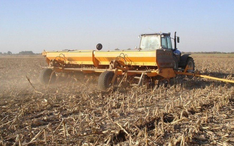 En Buenos Aires, la siembra de cebada cerró sobre el millón de hectáreas, con fuerte presencia de la región sudeste
