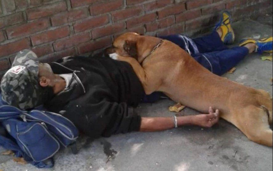Amigo fiel: un trapito se descompensó y su perro lo cuidó hasta que llegó la ambulancia