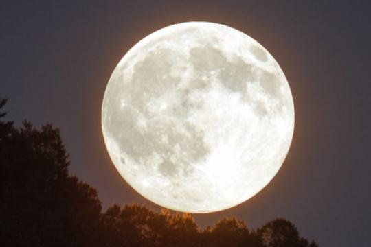 ?luna de gusano?: enterate como y donde se podra ver la segunda superluna del ano