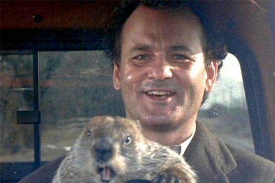 Bill Murray y Phil, la marmota en la película de 1993 que recrea el 2 de febrero cuando el animal predice cuanto más durará el invierno