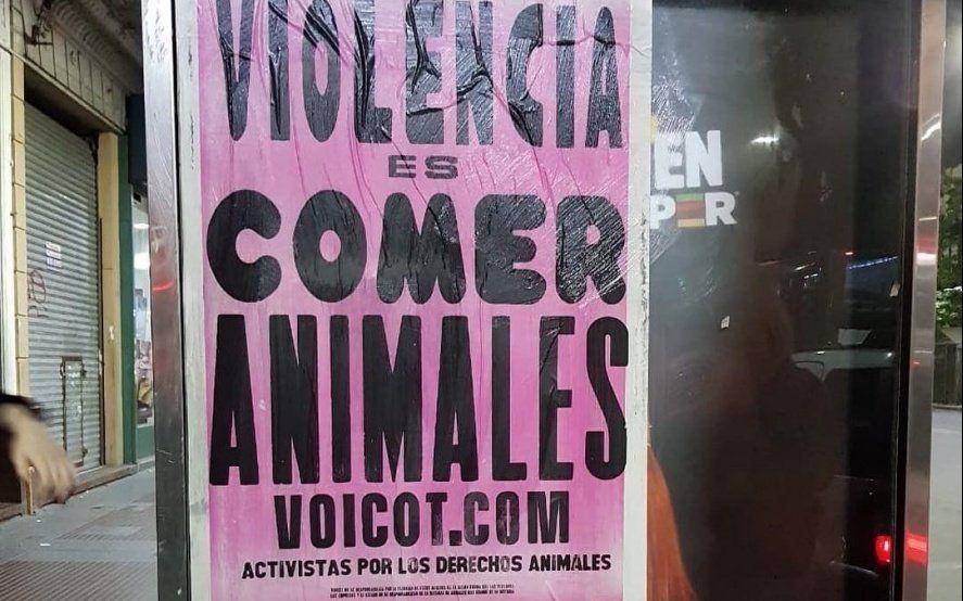 Violencia es comer animales: activistas veganos empapelaron La Plata con mensajes de liberación