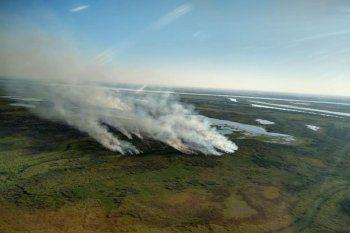 Los incedios en el Delta del Río Paraná atentan seriamente contra el ambiente (foto: noticias.unsam.edu.ar)
