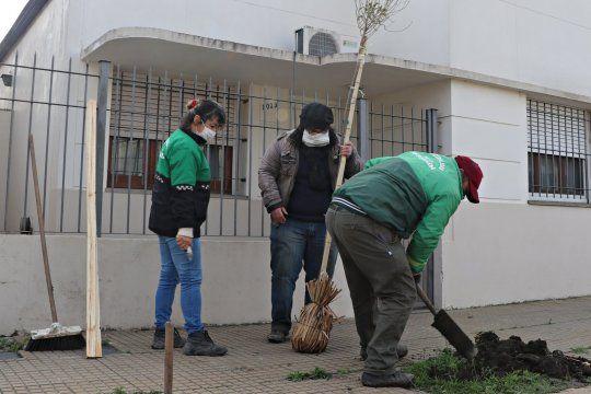 Los árboles que se plantan durante esta etapa son en su mayoría jacarandás, crespones y ligustros