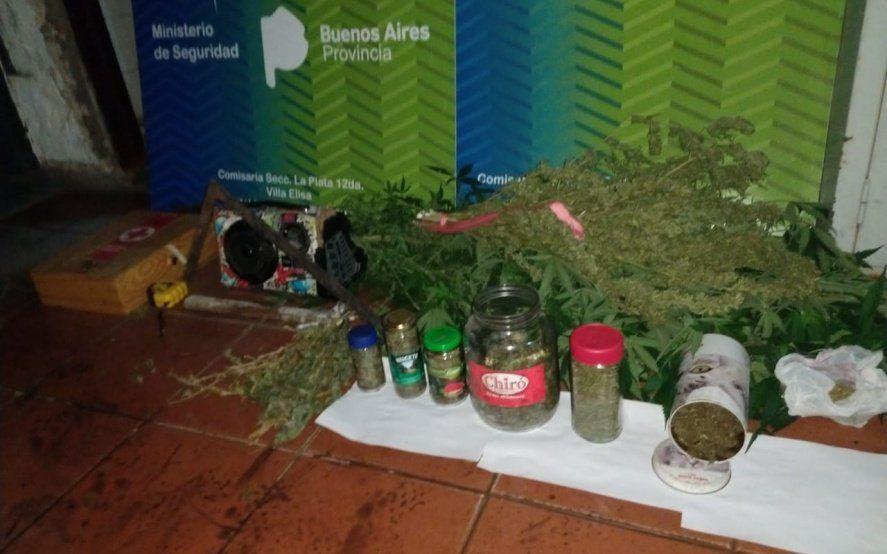 La Plata: los fueron a buscar acusados de robar una moto y tenían plantas de marihuana