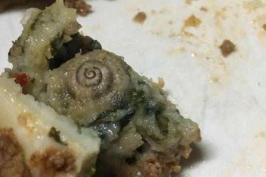 grave: medicos del hospital penna denuncian que encontraron gusanos y un caracol en la comida