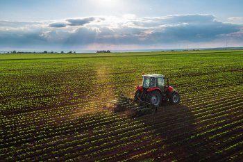 Las exportaciones de productos y manufacturas agropecuarias fueron récord en el comienzo de 2021.