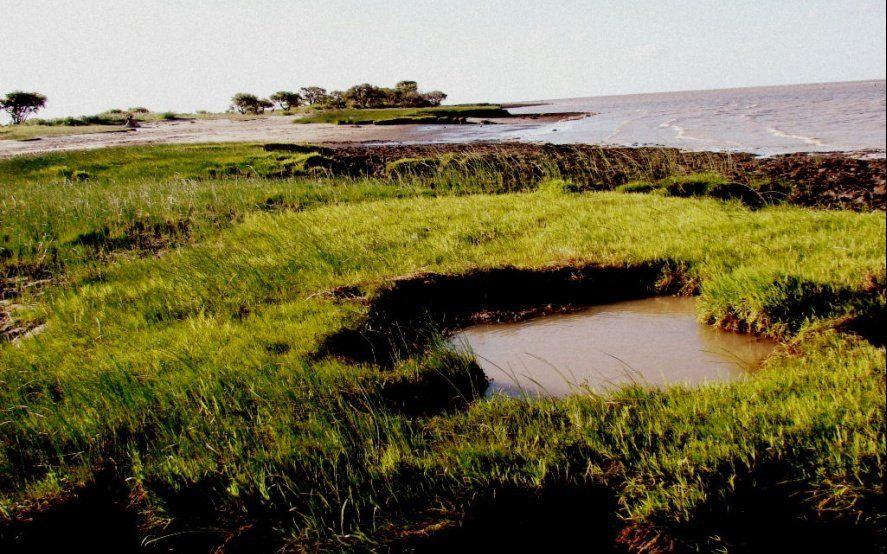 El parque Costero del Sur puede perder la membresía de la UNESCO y ambientalistas temen una privatización