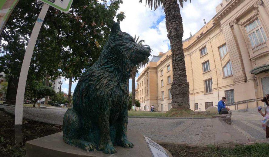 Bahía Blanca: Inauguraron el monumento al perro callejero