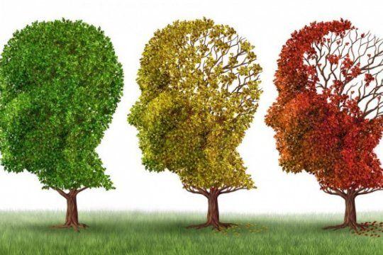 dia mundial del alzheimer: personas con antecedentes familiares tienen mas de riesgo de padecerla