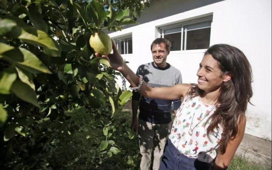 Necochea Ciudad Frutal: conocé el proyecto solidario y ecológico que impulsa un grupo de vecinos