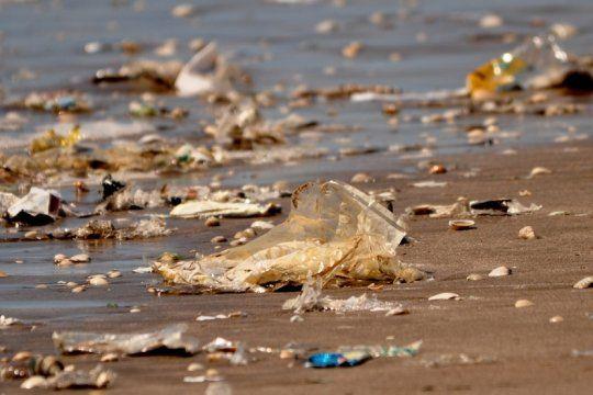 basura costera: el 80% de los residuos encontrados en las playas bonaerenses son plasticos
