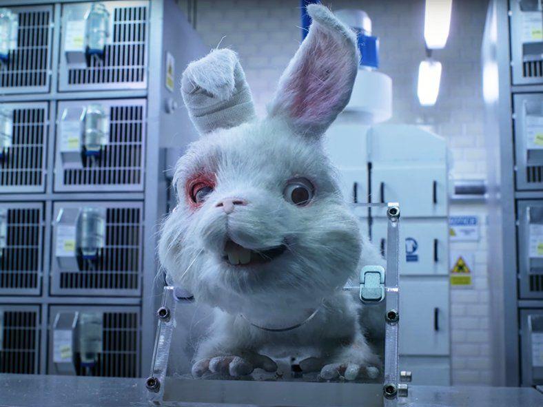 Save Ralph puso en cuestión la experimentación en animales para la industria de cosméticos