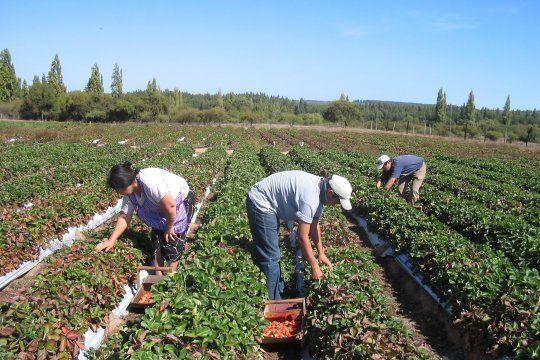 Provincia lanzó el el programa Desarrollo Rural Bonaerense